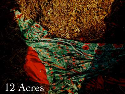 12acres1 cover__1443414344_50.81.118.225
