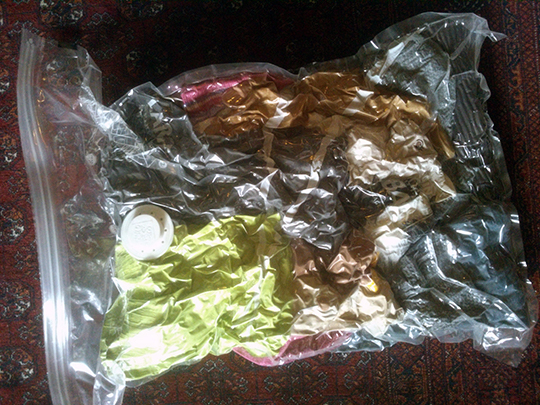 1vacumedanimals1