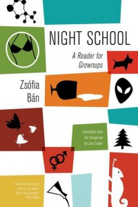 Zsofia Ban Night School