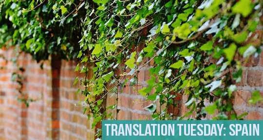 Translations – Asymptote Blog